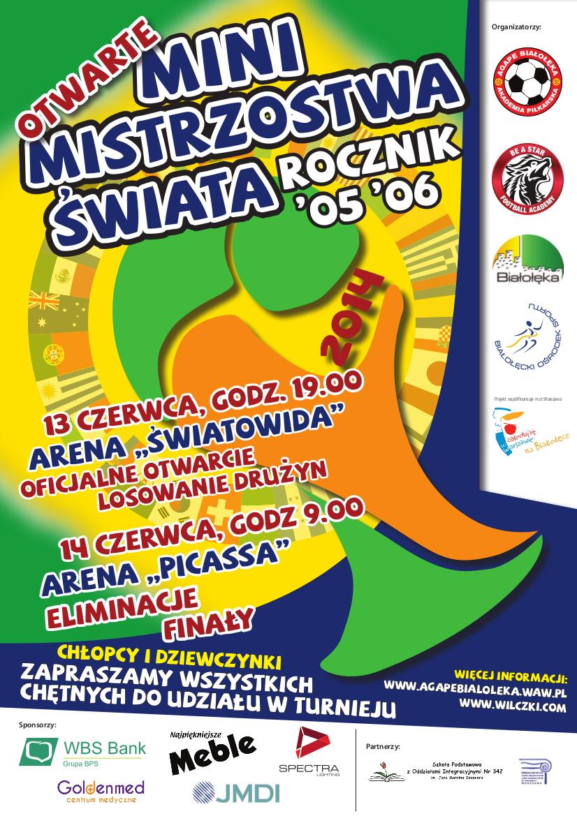Mini Mistrzostwa Świata  2014