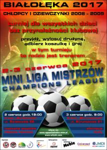 miniLM_2017